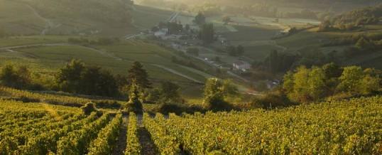 bnb:Côtes de Beaune
