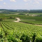 chablis-wine-charming-guest-house-burgundy