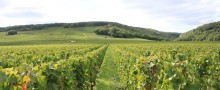 accommodation-breakfast-burgundy-wine-route